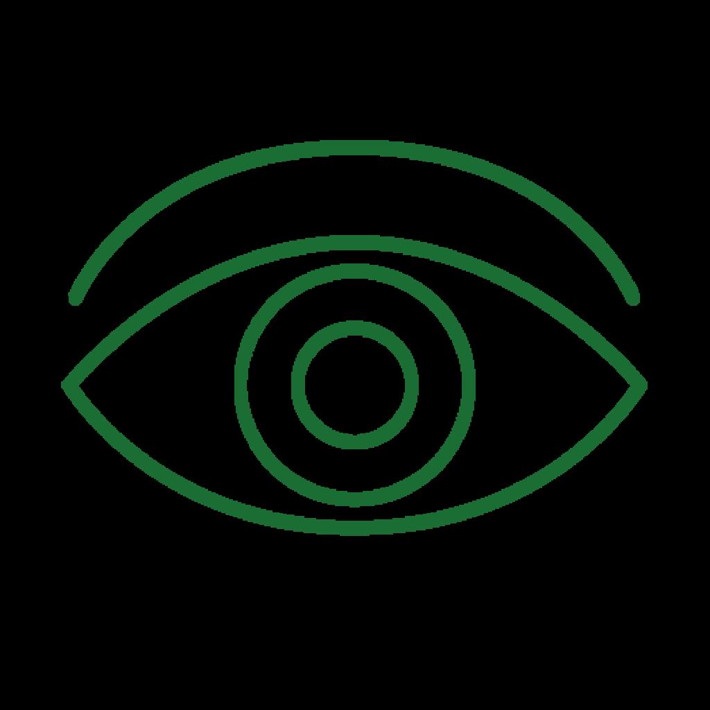 ico-eye